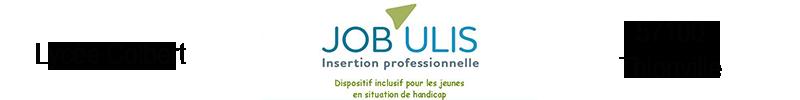 JOB'ULIS dispositif d'insertion professionnelle pour les jeunes en situation de handicap